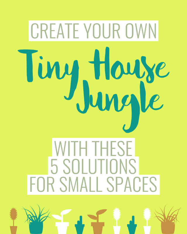 Tiny house jungle
