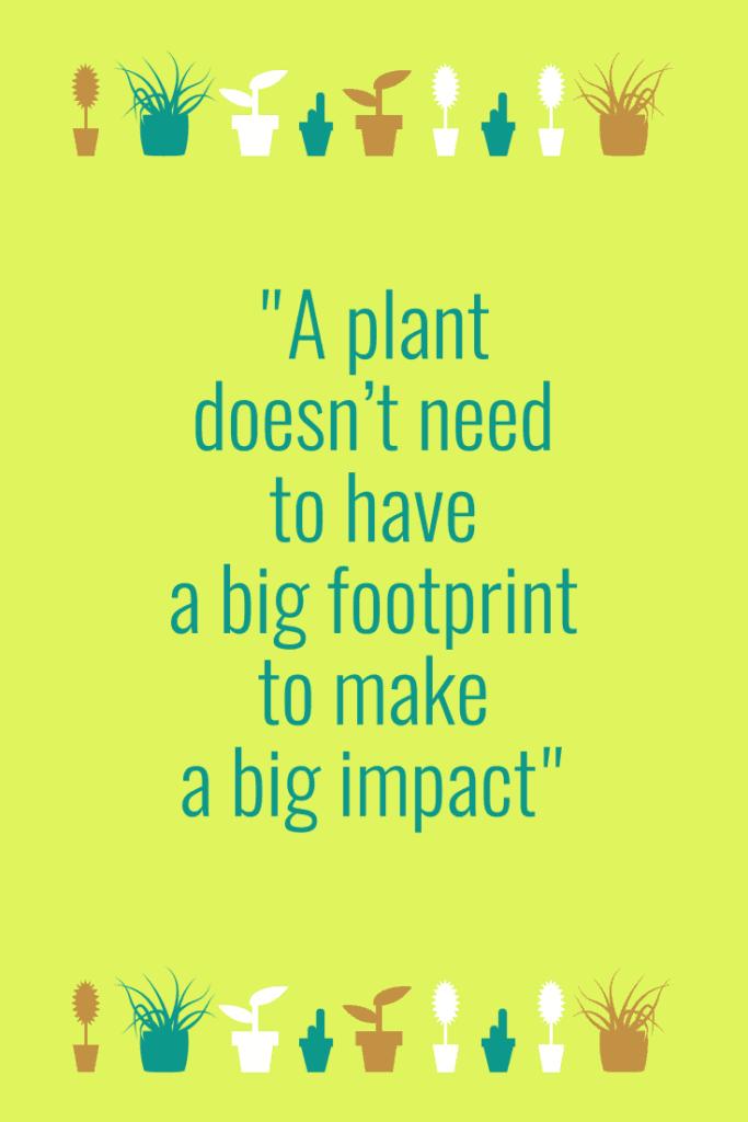 Tiny house plant footprint
