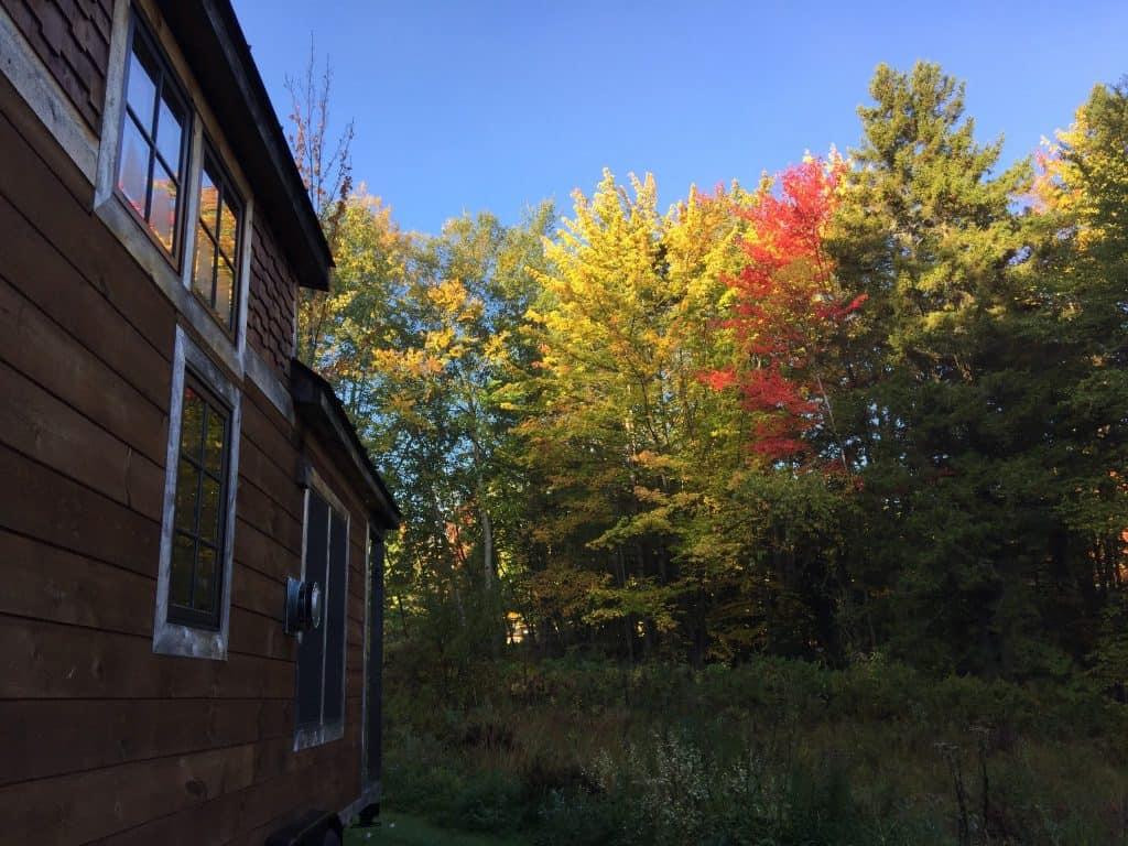 fall at the tiny house