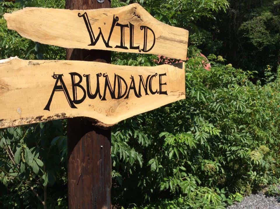 Wild Abundance sign
